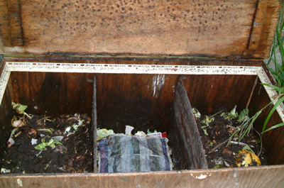 Inside the wormery, showing the partitions with compost at different stages
